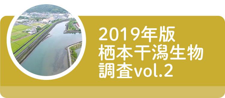 2019年版栖本干潟生物調査vol.2